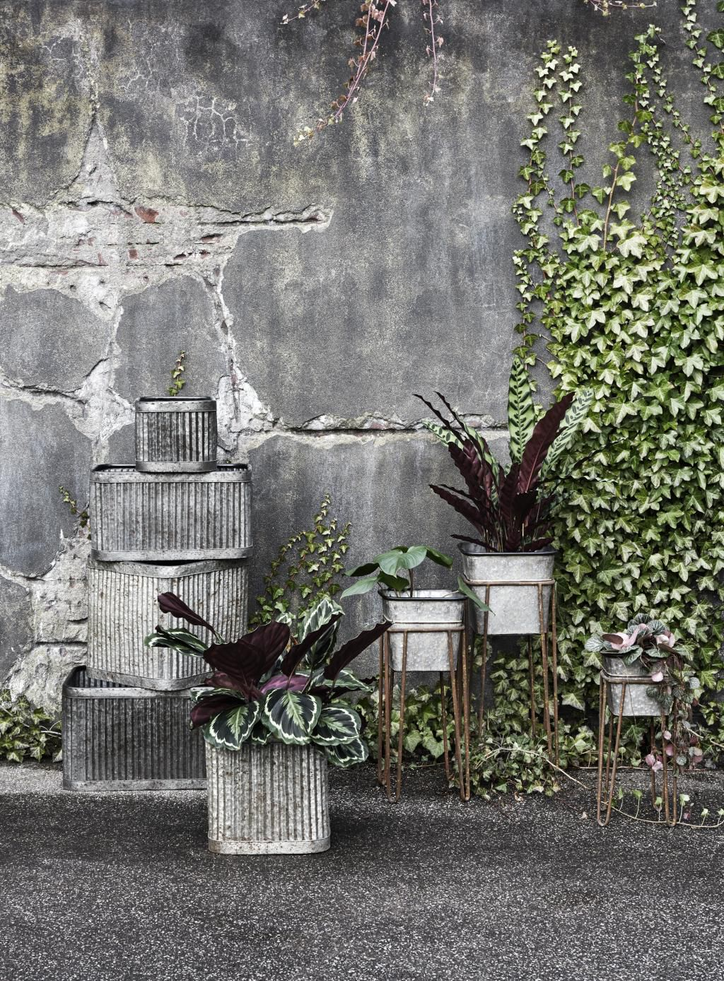 plantenbak---bruin---metaal---l---nordal[1].jpg